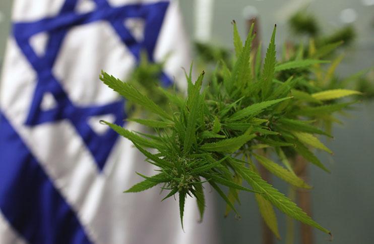 Marijuana-Stocks-israel